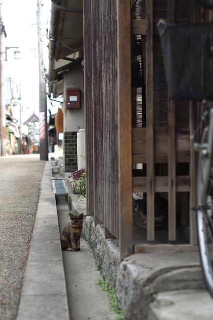 奈良県今井町