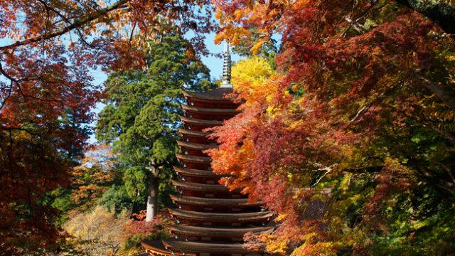 談山神社十三重塔の紅葉