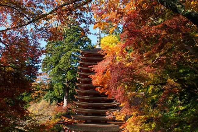談山神社〜吉野山 紅葉狩りツーリング