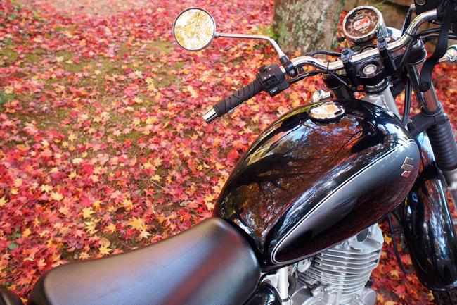 ST250と吉野山の紅葉