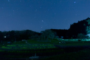 リベンジ!本郷の瀧桜(又兵衛桜)で星撮り