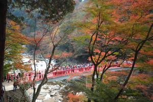 愛知県 香嵐渓で紅葉狩り