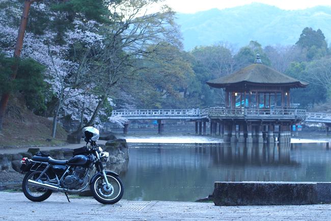 ST250 in 奈良公園 浮見堂