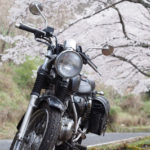 ST250と桜 in 奈良奥山ドライブハイウェイ