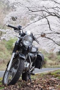 奈良お花見ツーリング2016 その3 奈良奥山ドライブウェイ編