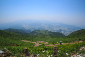 日本百名山 伊吹山に登ってきた