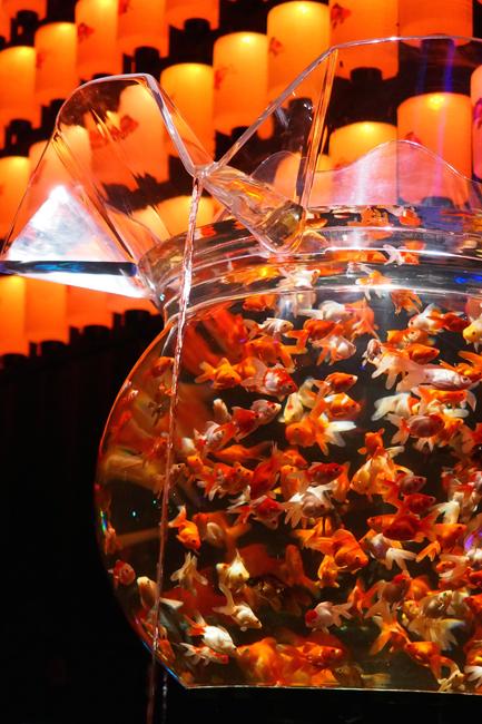 アートアクアリウム展 〜大阪・金魚の艶〜に行ってきた