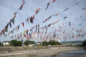 1,000匹の鯉のぼりを見に「こいのぼりフェスタ1000」へ行ってきた