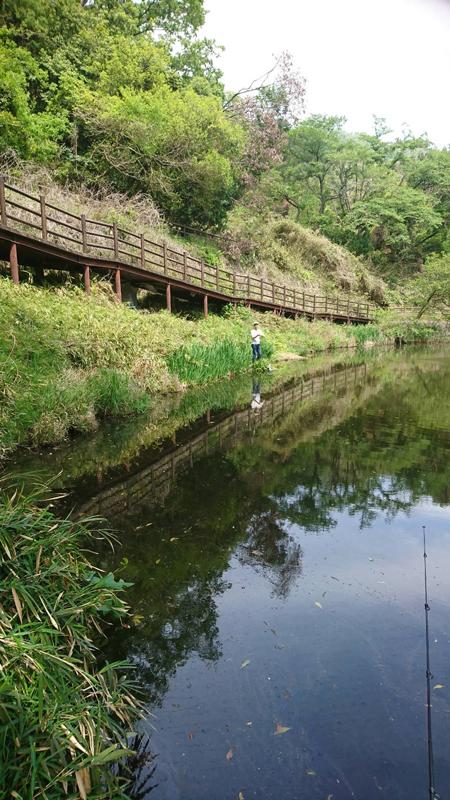 恩智神社の上の池で釣り