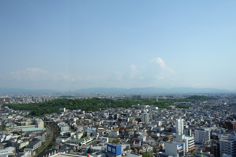 堺市役所展望台から眺める仁徳天皇陵古墳