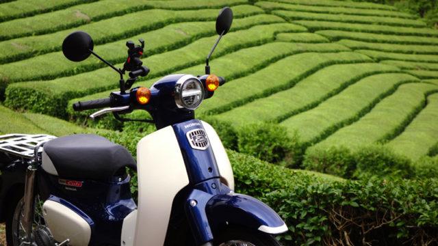 スーパーカブ110(JA44) in 和束町の茶畑