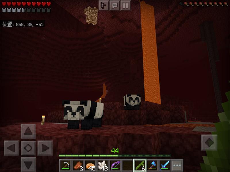 ジャングルからパンダを連れ帰る